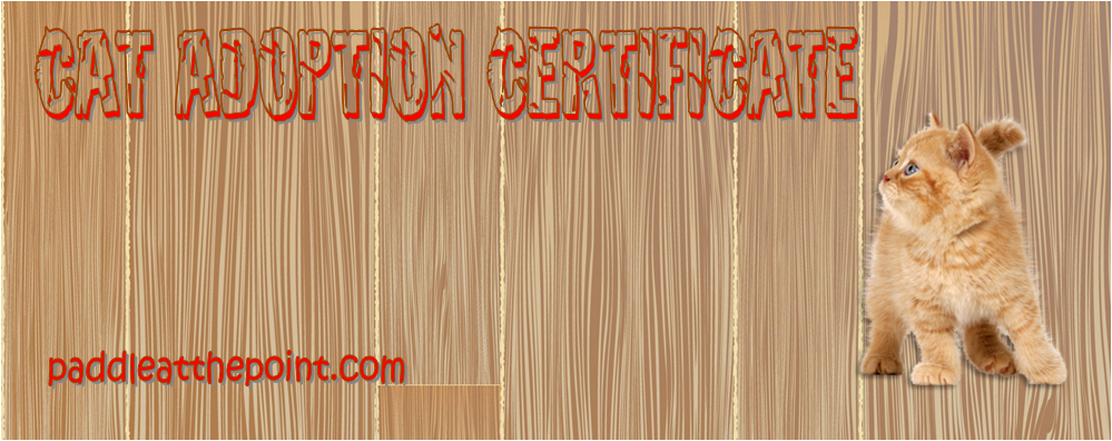 cat adoption certificate template, cat adoption certificate free printable, cat adoption certificate pdf, stuffed cat adoption certificate, kitten adoption certificate, pet adoption certificate template free
