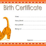 Cat Birth Certificate Template 8