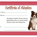 Dog Adoption Certificate Template 6