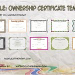 Ownership Certificate Templates
