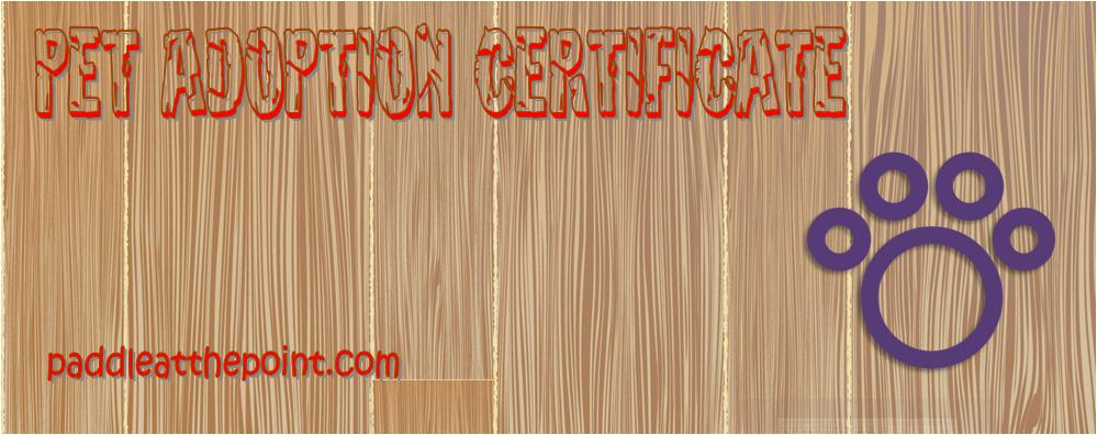 pet adoption certificate template free, free pet adoption certificate template word, pet rock adoption certificate, littlest pet shop adoption certificate, pet certificate of adoption, pet adoption certificate printable free