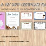 Pet Birth Certificate Templates Paddle