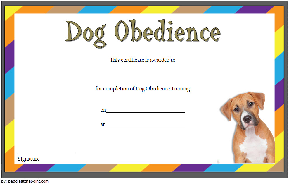 dog obedience certificate template, dog training graduation certificate template, service dog training certificate template, dog training certificate template download, dog obedience certificate printable, dog adoption certificate printable, therapy dog certificate printable, dog show certificate template, training certificate template doc, certificate of training completion template