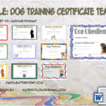 Dog Training Certificate Templates By Paddle