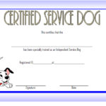 image relating to Printable Service Dog Certificate identified as Services Puppy Certification Template 6 Paddle At The Level