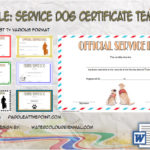 Service Dog Certificate Templates By Paddle