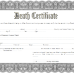 Death Certificate Template West Virginia 1