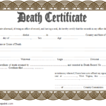Death Certificate Template West Virginia 3