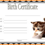 Kitten Birth Certificate Template 1