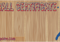 Baseball Certificate Template FREE by Paddle