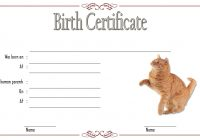 Cat Birth Certificate Template 1