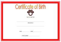 Cat Birth Certificate Template 6