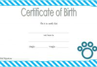 Cat Birth Certificate Template with Simple Designs