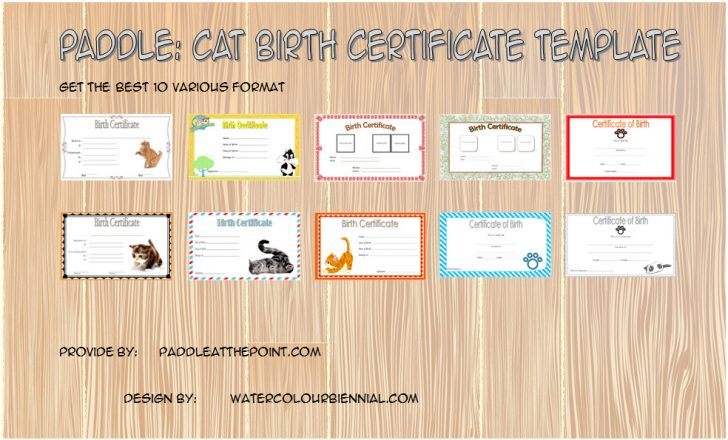 Permalink to Kitten Birth Certificate Template