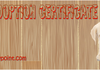 Dog Adoption Certificate Free Printable by Paddle