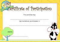 Participation Certificate Template 5