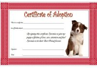 Pet Adoption Certificate Template 9