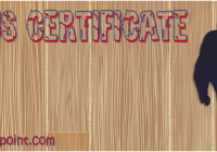 Printable Tennis Certificate Templates by Paddle