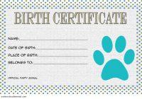 Stuffed Animal Birth Certificate Template 1