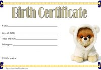 Stuffed Animal Birth Certificate Template 4