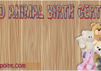 Stuffed Animal Birth Certificate Template Ideas by Paddle
