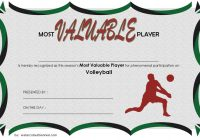 Volleyball Award Certificate Template Free 2
